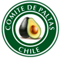 Palta Hass Chile