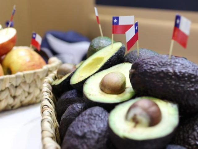 Comité de Palta participó en la Chile Week China 2019